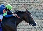 Off Duty comes into the Ack Ack off a win in the Phoenix (gr. III)