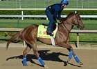 War Story