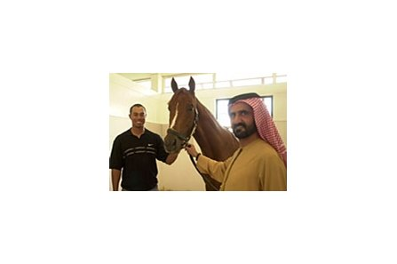 Golfer Tiger Woods (left) and Sheikh Mohammed flank Godolphin Racing's Best of the Bests during a stable tour in Dubai on Wednesday.