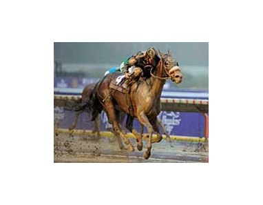 "Maryfield scores at 8-1 in the inaugural Breeders' Cup Filly and Mare Sprint.<br><a target=""blank"" href=""http://www.bloodhorse.com/horse-racing/photo-store?ref=http%3A%2F%2Fpictopia.com%2Fperl%2Fgal%3Fprovider_id%3D368%26ptp_photo_id%3D2619121%26ref%3Dstory"">Order This Photo</a>"