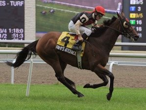 Grand Adventure, Spice Route Duel in Nijinsky