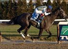 Rare Gift, with Richard Migliore up, captures the Ladies Handicap, Saturday at Aqueduct.