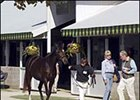 Buyers and sellers gather for record Keeneland sale of breeding stock.