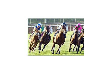 Megahertz, blue cap on left, goes around the field, including the ultimate winner, Katdogawn, pink silks, at the top of the stretch in the Santa Ana Handicap, Saturday at Santa Anita.