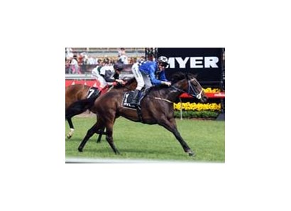 Divine Madonna shows her skill over a mile in the Myer Classic.