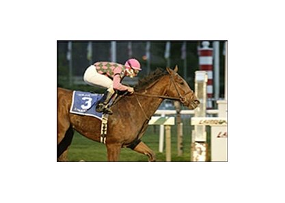 This win in the 2003 De Francis Dash was a highlight of the career of A Huevo.