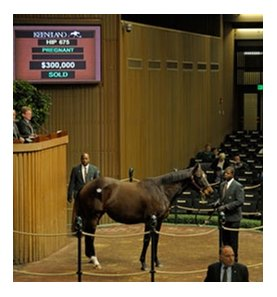 Hip#675; Vestrey Lady, who is in foal to Broken Vow, was the $300,000 session topper for the 2nd day of the Keeneland January horses of all ages sale.