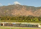 Santa Anita Park is among the assets owned by MEC to be sold separately.