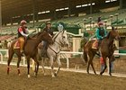 New Santa Anita Dirt Handles Record Rainfall
