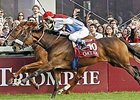 Solemia (near) and Orfevre finished one-two in the 2012 Qatar Prix de l'Arc de Triomphe.
