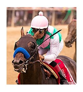 Fame and Power went gate-to-wire in the May 16 Sir Barton Stakes at Pimlico Race Course.