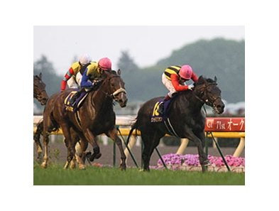 Apapane (left) and Saint Emilion finished the Japanese Oaks in a dead heat.