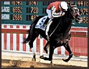 War Emblem Sold; Leaves For Baffert Barn Friday