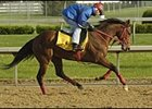Afleet Alex, impressive in Tuesday workout at Churchill Downs.