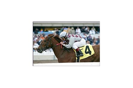 Kentucky Derby and Preakness winner Funny Cide, with Jose Santos aboard, runs to an easy victory in his 2004 debut, Saturday at Gulfstream Park.