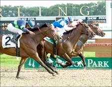 In Summation Settles for Draw in Arlington Sprint