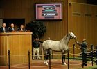 Diamond Necklace in the Keeneland Sales ring Nov. 3.
