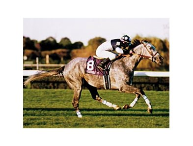 With Approval, who sired 50 stakes winners, won the 1989 Canadian Triple Crown and finished 2nd in the 1990 Breeders' Cup Turf.