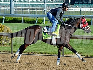 Interntional Star at Churchill Downs April 28.