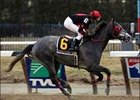 Whirlaway Stakes winner Achilles of Troy will continue on the road to the Kentucky Derby in Florida.