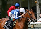 "Music Show pulls away late to win the Etihad Airways Falmouth Stakes at Newmarket.<br><a target=""blank"" href=""http://www.bloodhorse.com/horse-racing/photo-store?ref=http%3A%2F%2Fpictopia.com%2Fperl%2Fgal%3Fprovider_id%3D368%26ptp_photo_id%3D9098236%26ref%3Dstory"">Order This Photo</a>"