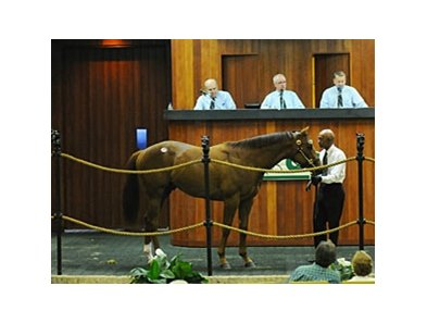 The Sale-Topper, hip #373, a More Than Ready colt out of the Silver Deputy mare, Jouled Rhythms brought $650,000 to pace the OBS March juvenile auction.