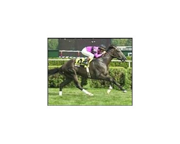 Baptize carried Jerry Bailey to victory in the National Museum of Racing Hall of Fame.