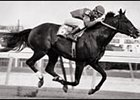 Star de Naskra, shown here winning the Bold Ruler at Aqueduct in 1979 under jockey Jeffrey Fell.