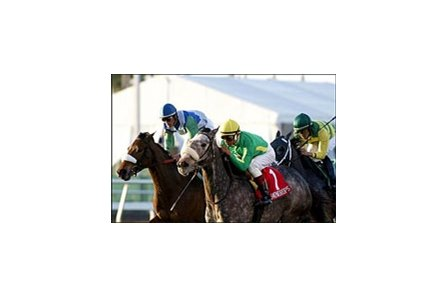 Snowdrops, center, wins the Suwannee River Handicap, Saturday at Gulfstream Park.