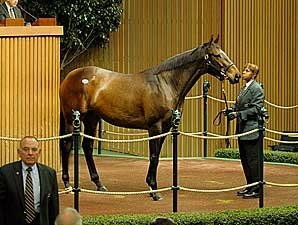 Lady Joanne Goes for $1.25 Million