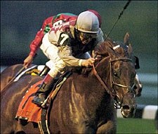 Funny Cide Gets Serious in JC Gold Cup