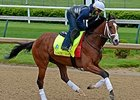 Danzig Moon at Churchill Downs April 26.