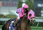 Saint Liam Looms in Whitney  Handicap