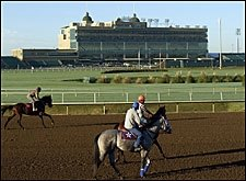 For Breeders' Cup, Yet Another Host Site Test