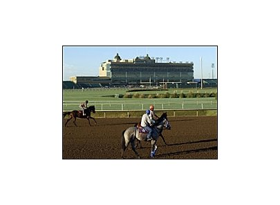 For Lone Star Park officials, hosting their first Breeders' Cup is both a joy and a test.
