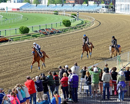 Caption:  l-r, Dortmund with Dana Barnes, American Pharoah with Georgie Alvarez, and Jimmy Barnes on on the track for the first time at Pimlico.