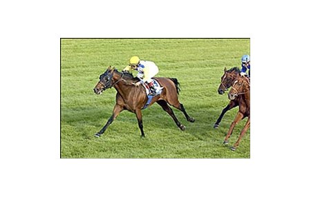 Perfect Soul impressive in Shadwell win.