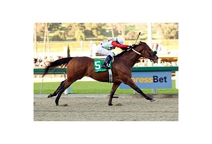 "Johnny Eves takes the Malibu Stakes (gr. I) on opening day at Santa Anita Park.<br><a target=""blank"" href=""http://www.bloodhorse.com/horse-racing/photo-store?ref=http%3A%2F%2Fpictopia.com%2Fperl%2Fgal%3Fprovider_id%3D368%26ptp_photo_id%3D3130723%26ref%3Dstory"">Order This Photo</a>"