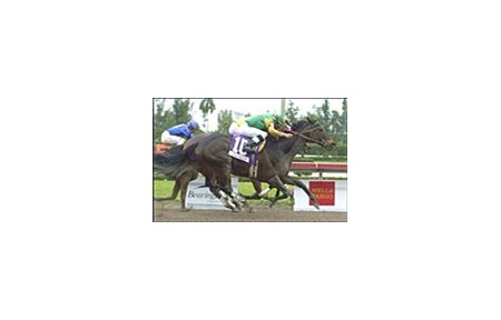 Madame Pietra (10) wins the $250,000 Padua Stables-Filly and Mare Sprint.