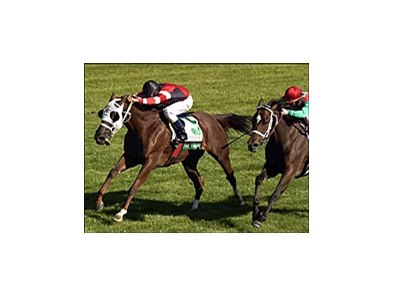 Stay Forever (left) with Eddie Castro aboard won the WinStar Galaxy, Sunday at Keeneland.