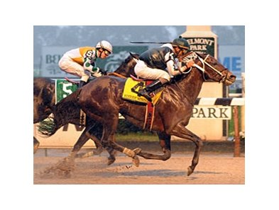 "Kodiak Kowboy outfinishes Fabulous Strike in the Vosburgh.<br><a target=""blank"" href=""http://www.bloodhorse.com/horse-racing/photo-store?ref=http%3A%2F%2Fpictopia.com%2Fperl%2Fgal%3Fprovider_id%3D368%26ptp_photo_id%3D8530546%26ref%3Dstory"">Order This Photo</a>"