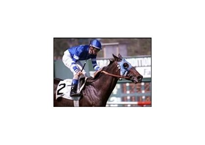 Happyanunoit, after winning the 2000 Beverly Hills Handicap.