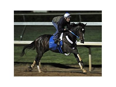 "Rachel Alexandra returns to Churchill Downs to run in the La Troienne.<br><a target=""blank"" href=""http://www.bloodhorse.com/horse-racing/photo-store?ref=http%3A%2F%2Fpictopia.com%2Fperl%2Fgal%3Fprovider_id%3D368%26ptp_photo_id%3D8932465%26ref%3Dstory"">Order This Photo</a>"