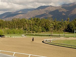 Santa Anita's Track Decision Due in May