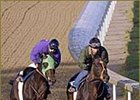Empire Maker, left, works in company at Churchill Downs Sunday morning.
