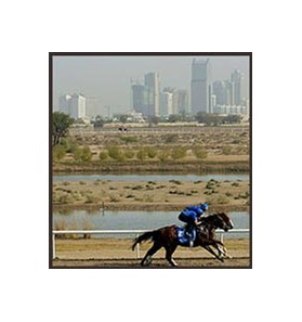 Sakhee, on the track at Nad al Sheba Racecourse Wednesday.