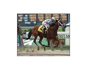 "Wonder Lady Anne L, splashes to CCA Oaks victory.<br><a target=""blank"" href=""http://www.bloodhorse.com/horse-racing/photo-store?ref=http%3A%2F%2Fpictopia.com%2Fperl%2Fgal%3Fgallery_id%3D6823%26process%3Dgallery%26provider_id%3D368%26ptp_photo_id%3D444401%26sequencenum%3D%26page%3D"">Order This Photo</a>"