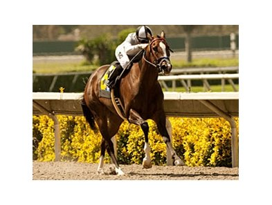 Tanda wins the Rancho Bernardo Handicap
