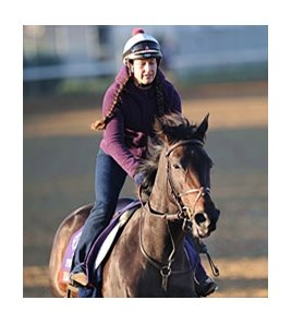 "Harmonious at Churchill Downs<br><a target=""blank"" href=""http://www.bloodhorse.com/horse-racing/photo-store?ref=http%3A%2F%2Fpictopia.com%2Fperl%2Fgal%3Fprovider_id%3D368%26ptp_photo_id%3D9726186%26ref%3Dstory"">Order This Photo</a>"