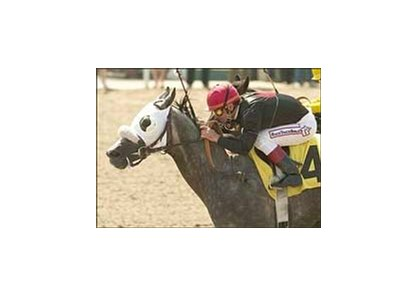 "Sailors Sunset and jockey Jon Court win the Los Angeles Handicap, Saturday at Hollywood Park.<br><a target=""blank"" href=""http://www.bloodhorse.com/horse-racing/photo-store?ref=http%3A%2F%2Fpictopia.com%2Fperl%2Fgal%3Fprovider_id%3D368%26ptp_photo_id%3D1180207%26ref%3Dstory"">Order This Photo</a>"